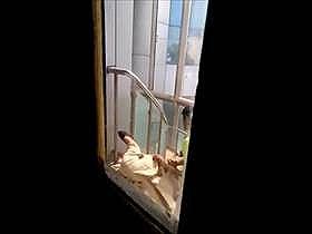 【素人盗撮】病院のスタッフか?野外の階段のベランダで彼女のアソコ弄ってるカップルの様子を同僚が撮影流出