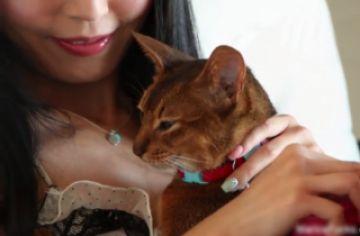 【無修正 素人】 この可愛いペットの猫が黒人に化けて飼い主の美女とセクロスww
