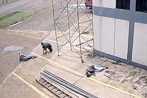 足場を動かしていた三人がまとめて感電してしまう衝撃映像