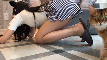 【画像】猫カフェにめっちゃエチな女の子いた