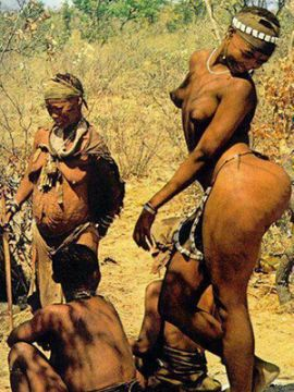 【画像】ホッテントットとかいう黒人部族の女、ケツがデカすぎるwwwwww